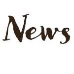 529 Website logo